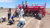 Respaldo a pequeños productores del departamento Figueroa