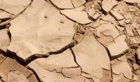 Europa restaurará más de cuatro millones de tierras degradadas